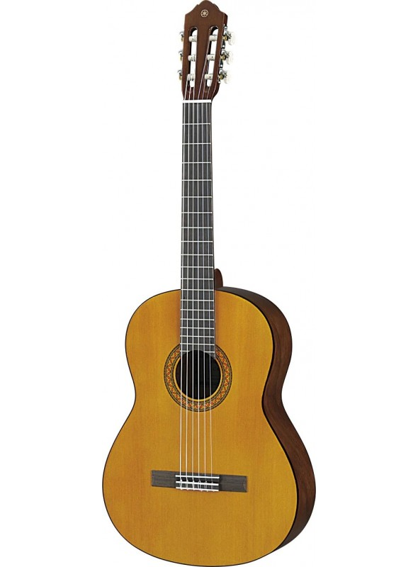 GUITARRA C40M MATE